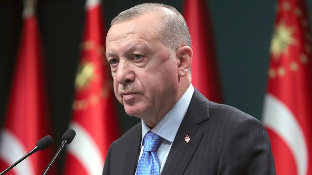 2021/01/erdogan2_1610638767.jpg
