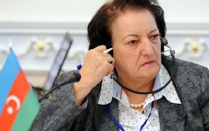elmira_suleymanova-ombudsmen.jpg